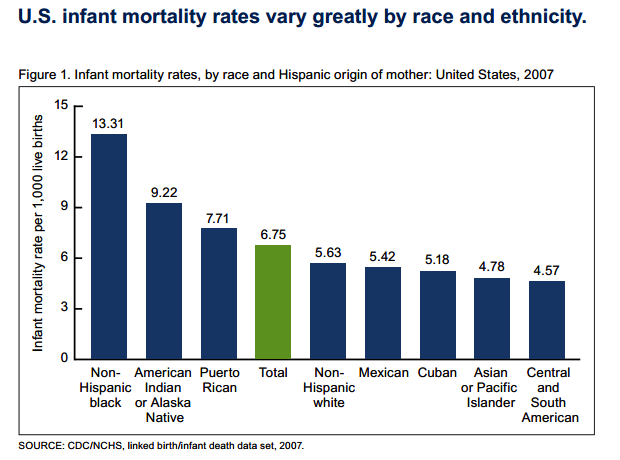 us_2007_imr_by_ethnicity