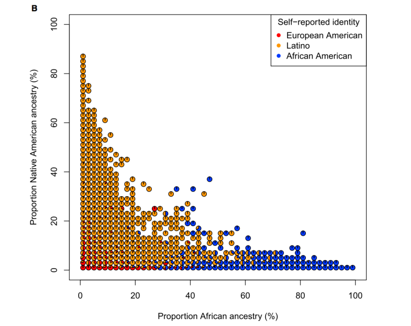 Proportion of self-identified race/ethnicity by percentage african and percentage indian ancestry