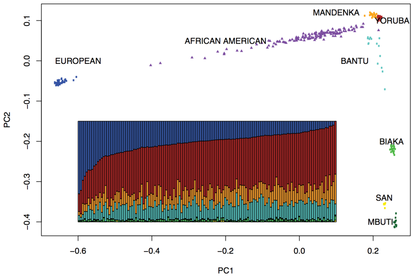 European, African American, African populations PCA