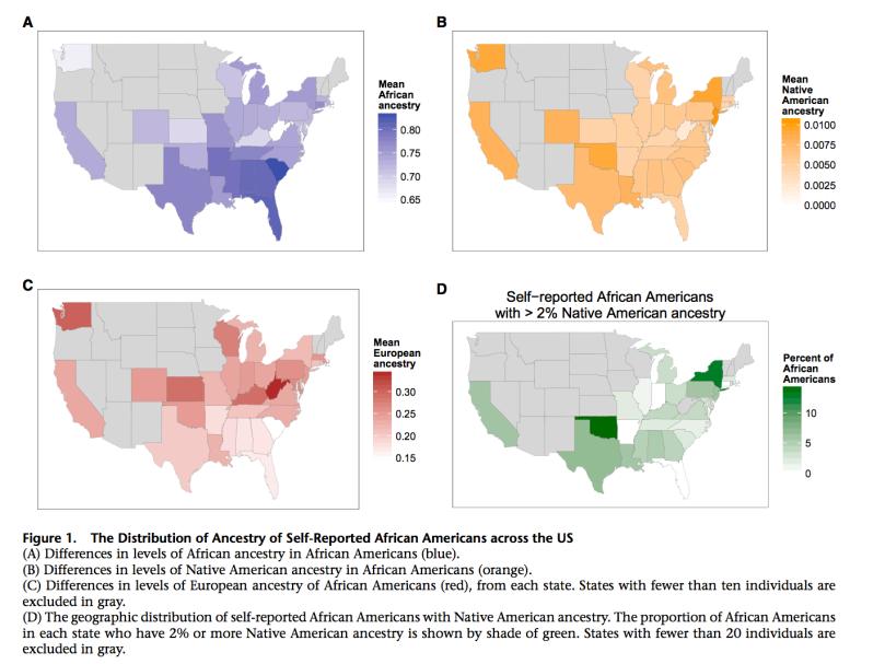 Genetic ancestry amongst self-reported blacks
